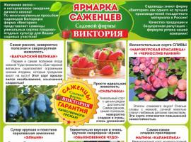Садовая фирма «Виктория»  г. Магнигорск