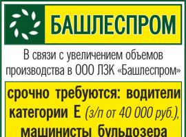 ООО ЛЗК «БАШЛЕСПРОМ» г. Белорецк, работа