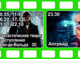 Кино с 22 по 28 ноября