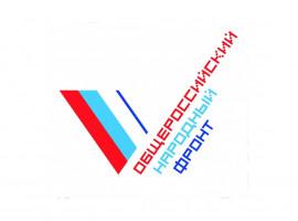 Глава Башкирии Радий Хабиров поддержал флешмоб #ГероиВмасках, запущенный в рамках всероссийской акции «Мы вместе»