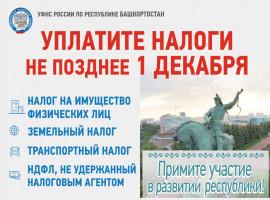 ФНС России  предупреждает
