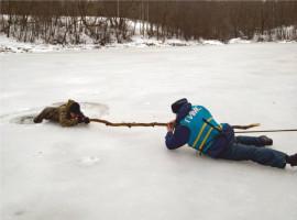 Весенний лёд – ненадёжный.