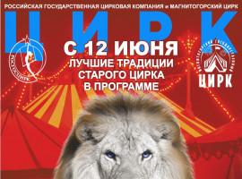 Магнитогорский цирк. Программа «Белые львы Африки»